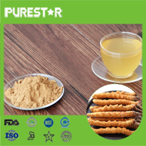 Cordyceps sinensis extract /polysaccharides