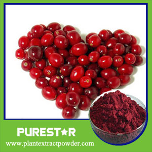 Cranberry Extract,Anthocyanidins