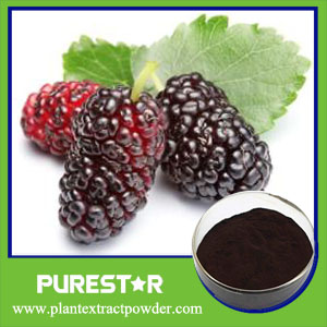 Mulberry Fruit Extract,Anthocyanidin