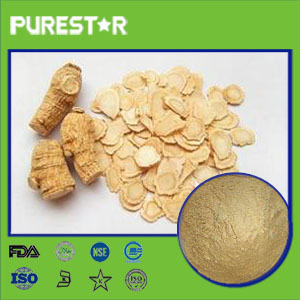 American Ginseng Extract,Ginsenosides