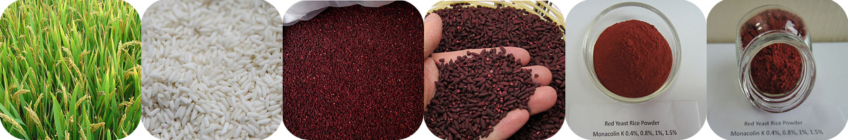 Red Yeast Rice Extract,Monacolin k,Lovastatin